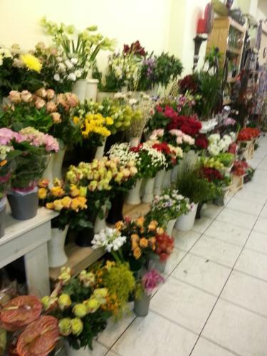 De bloementuin uit nijmegen regiobloemist for Www bloem en tuin nl