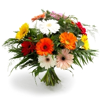 Gerbera Mixed Bouquet