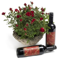 Roses and gift red wine